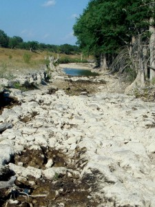 Guadalupe River Stops Flowing Near Canyon Lake, June, 2009. Photo courtesy of Polly Haberkorn